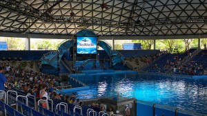 Sea-World-of-Texas-Shamu-Stadium-01