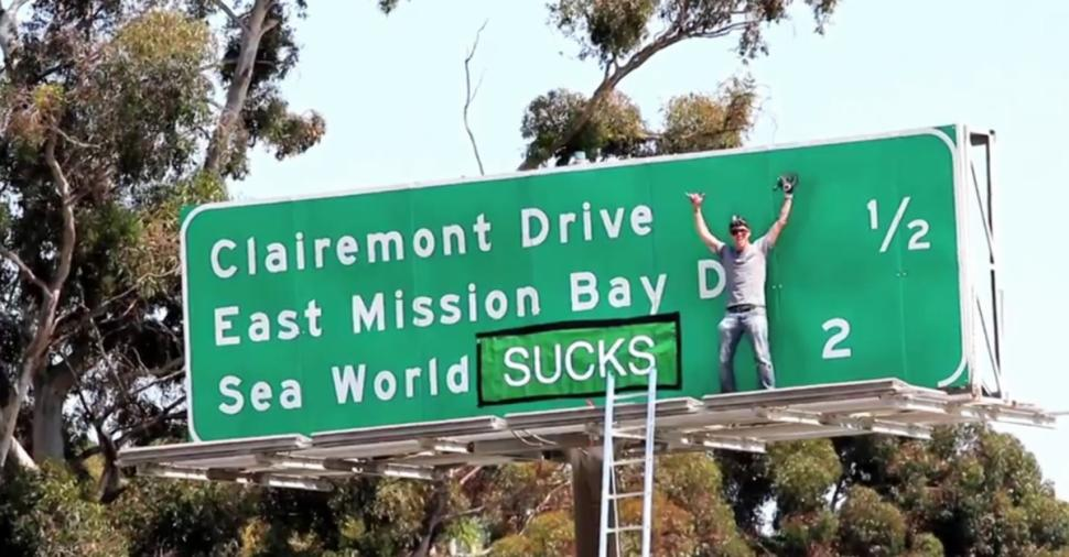 steve-o-sea-world-stunt